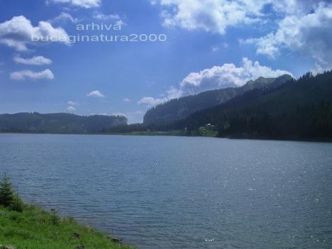 lac bolboci