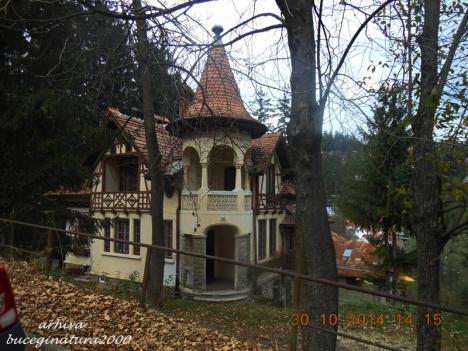Casa Sinaia 1