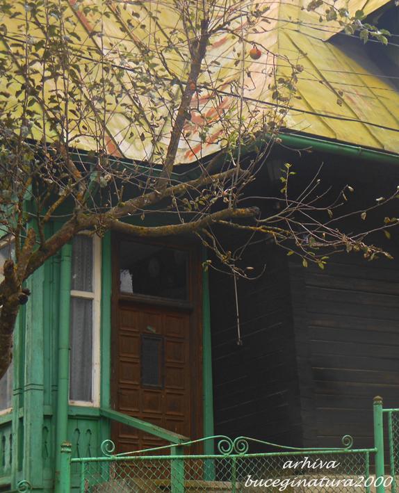 Casa Sinaia 5