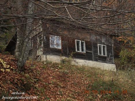 Casa Sinaia 7