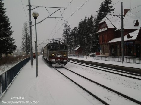 tren poiana tapului