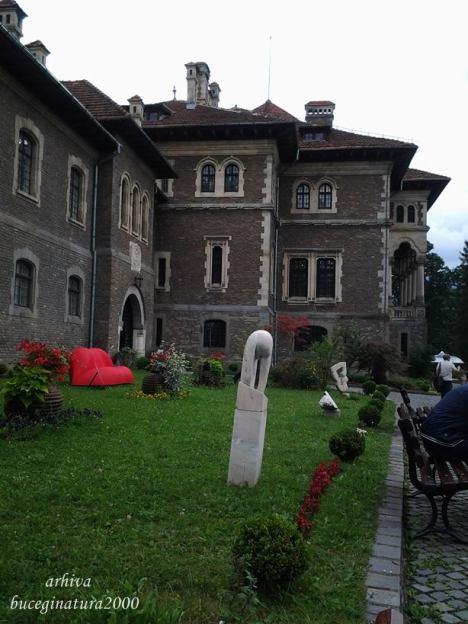 castel 12